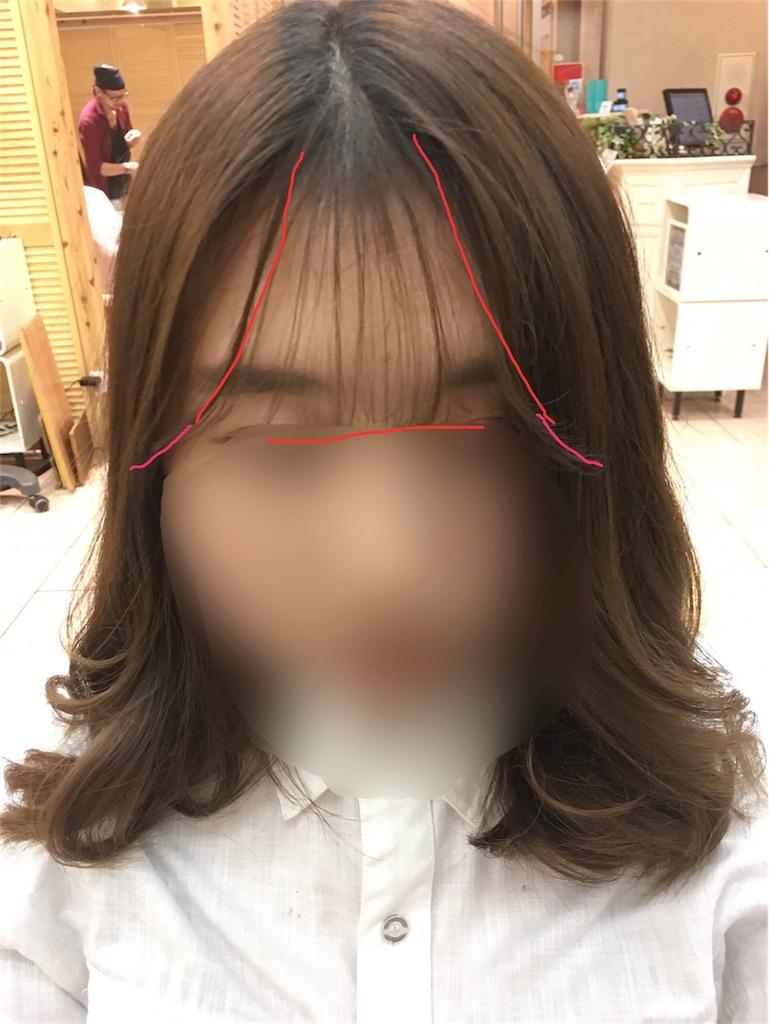 f:id:tomozou737:20170210111710j:image