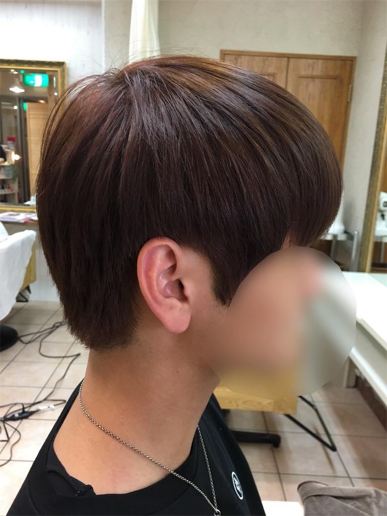 f:id:tomozou737:20170414235601j:image