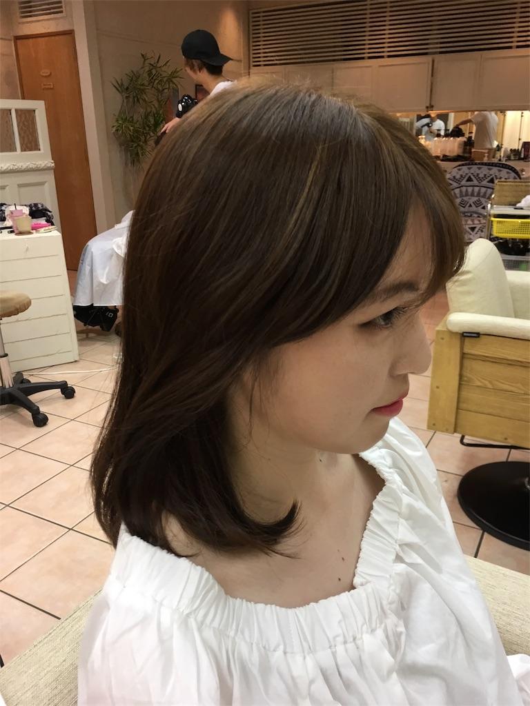 f:id:tomozou737:20170602121908j:image