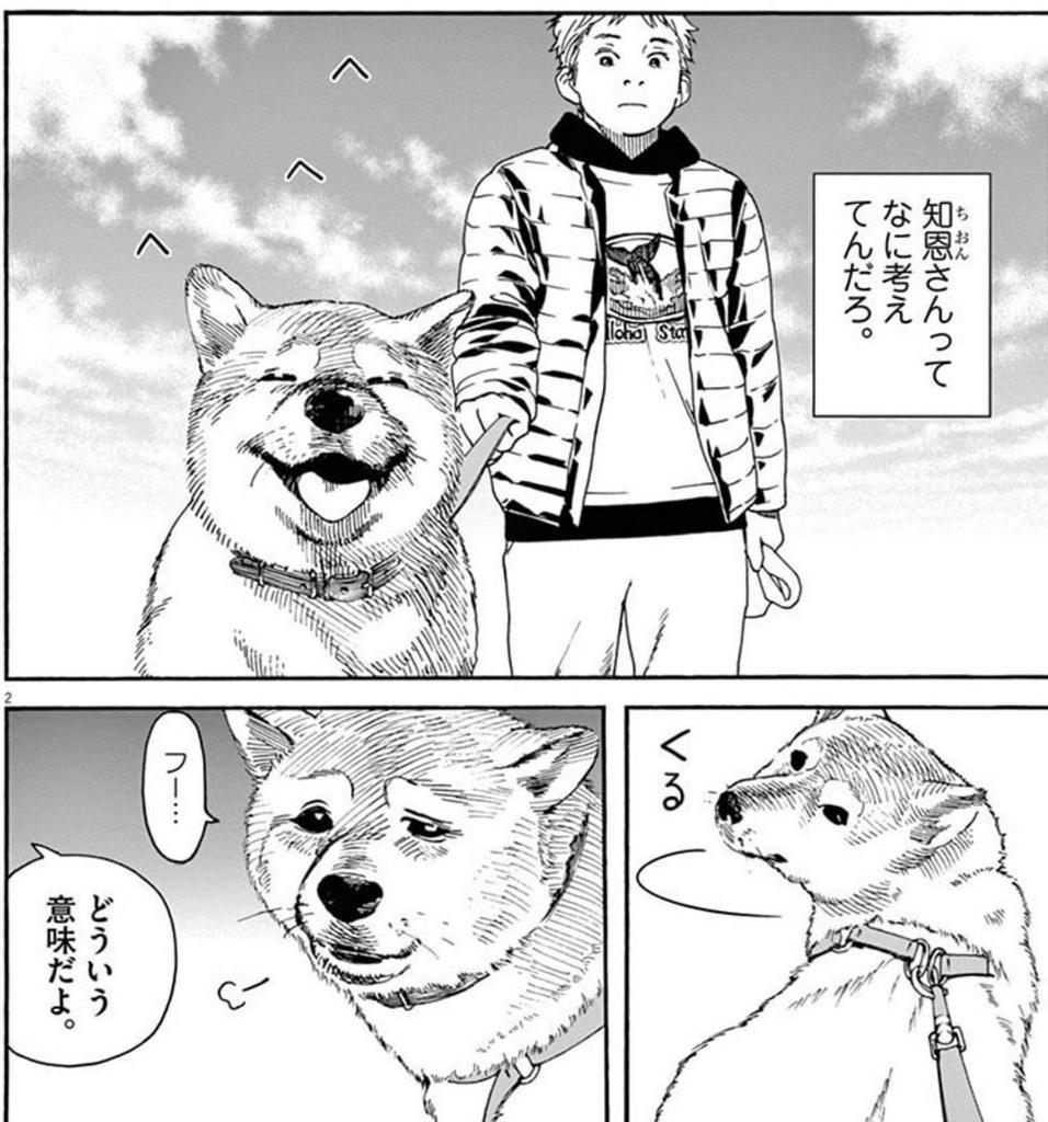 「猫のお寺の知恩さん」(オジロマコト)1巻より、テンちゃんの散歩