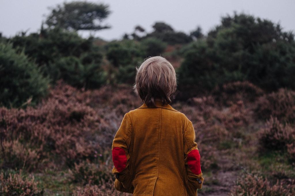 少年と秋の日