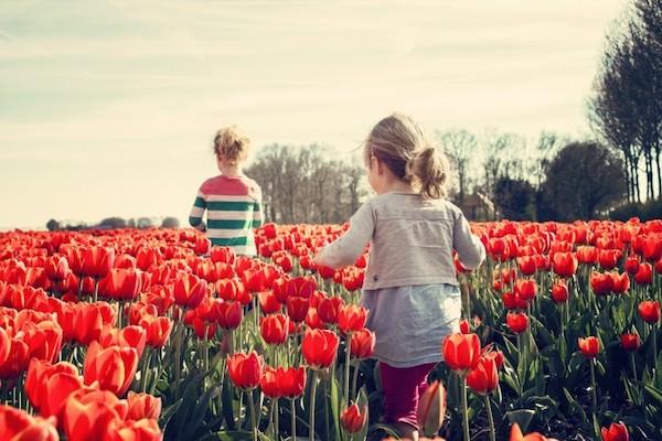 春のイメージ:チューリップの花と子供たち