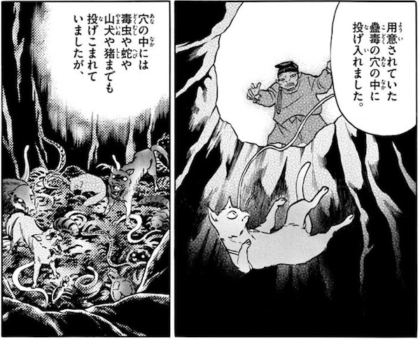 「MAO」(高橋留美子)34話より、蠱毒の穴に落とされる灰丸
