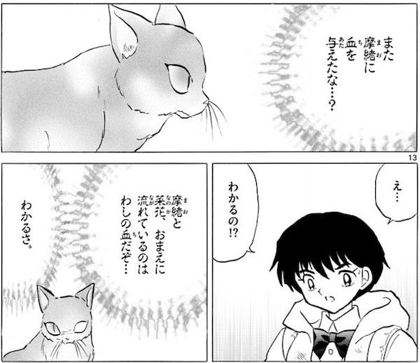「MAO」(高橋留美子)51話より、猫鬼が菜花の前に現れる