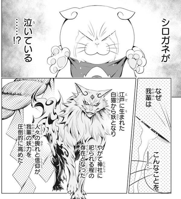 「あやかしトライアングル」(矢吹健太朗)29話より、シロガネが泣いている!?