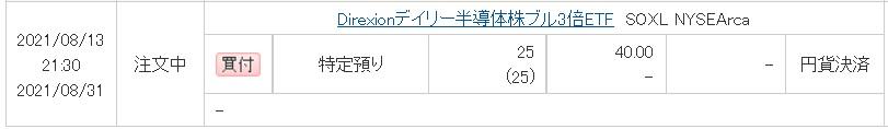 f:id:tomyrich:20210814152934j:plain