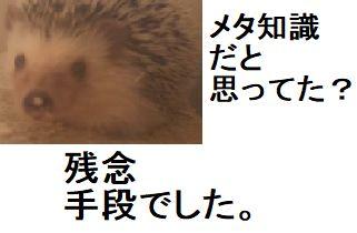 f:id:ton96O:20180614004710j:plain