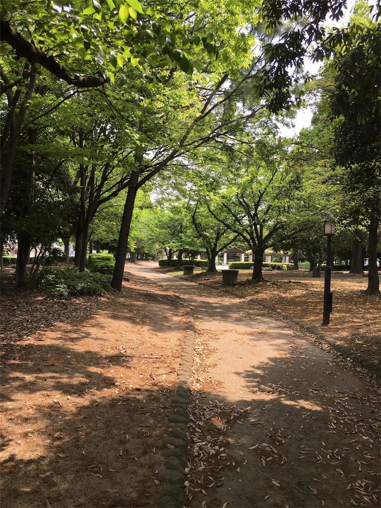 f:id:tonarino_tororo_desu:20170502070334j:image