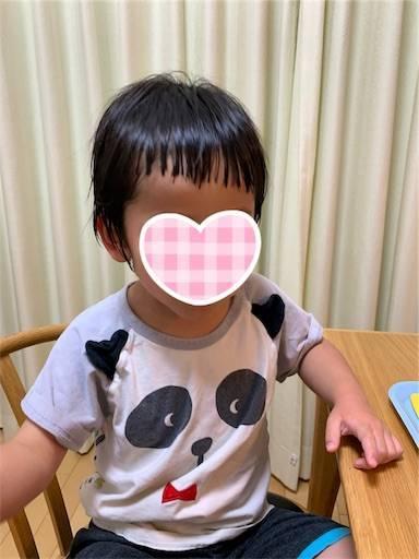 f:id:tonarino_tororo_desu:20200425041018j:image