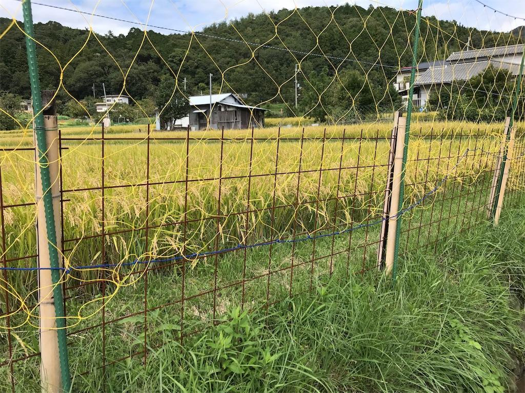 f:id:tonarinodokushokai:20190110004629j:image