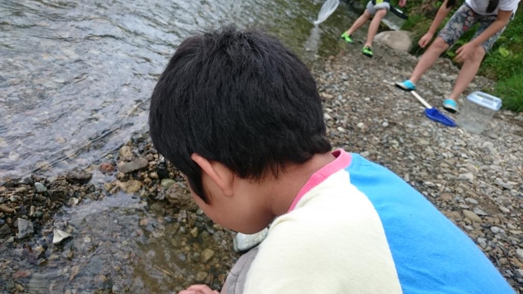 f:id:tonaryaori:20170513165142j:plain