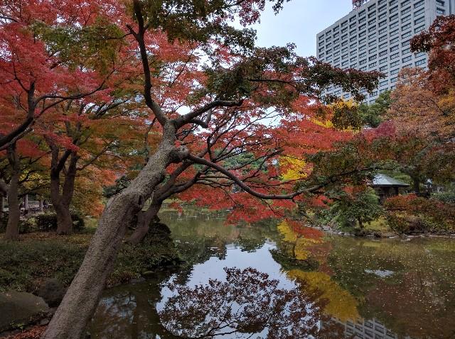 f:id:tonburioyaji:20161121193456j:image