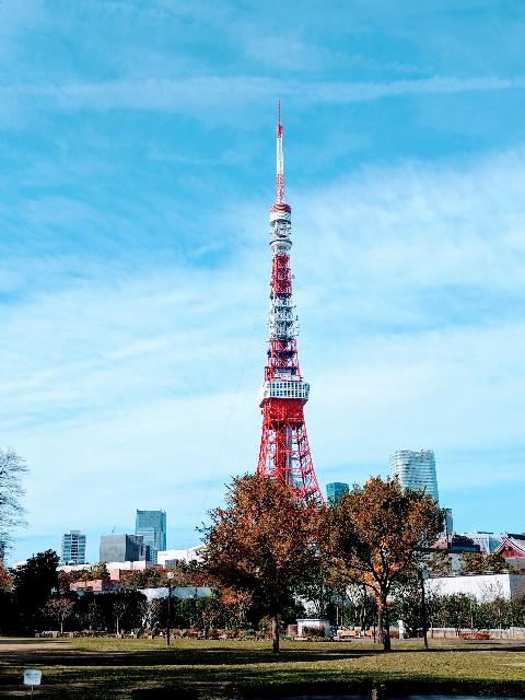 f:id:tonburioyaji:20161205175534j:image