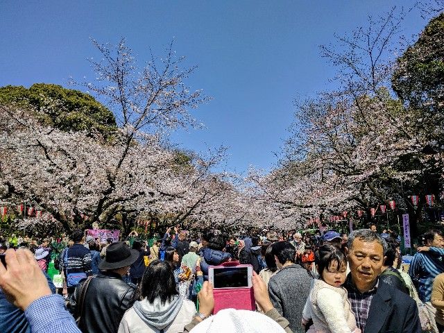 f:id:tonburioyaji:20170404203519j:image
