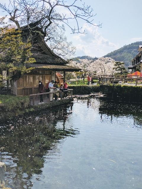 f:id:tonburioyaji:20170429174548j:image