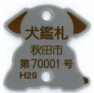 f:id:tongarashi:20180620144328j:plain