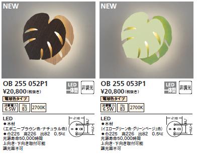 OB255052P1