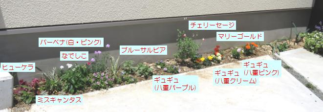 寂しい花壇