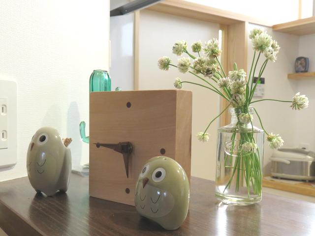 カウンター上の花瓶に生けたシロツメクサ