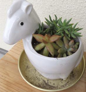 白い馬の植木鉢