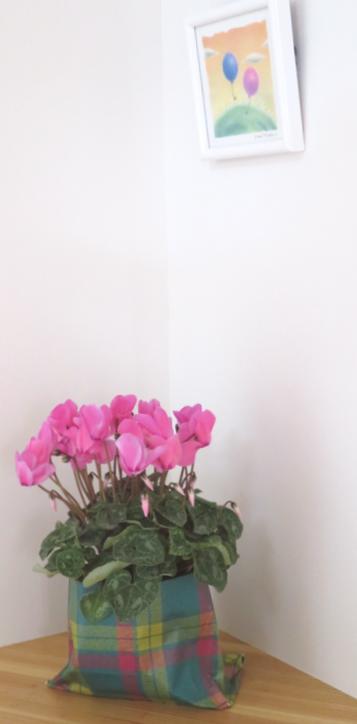 壁に掛かったパステル画とピンクのシクラメン