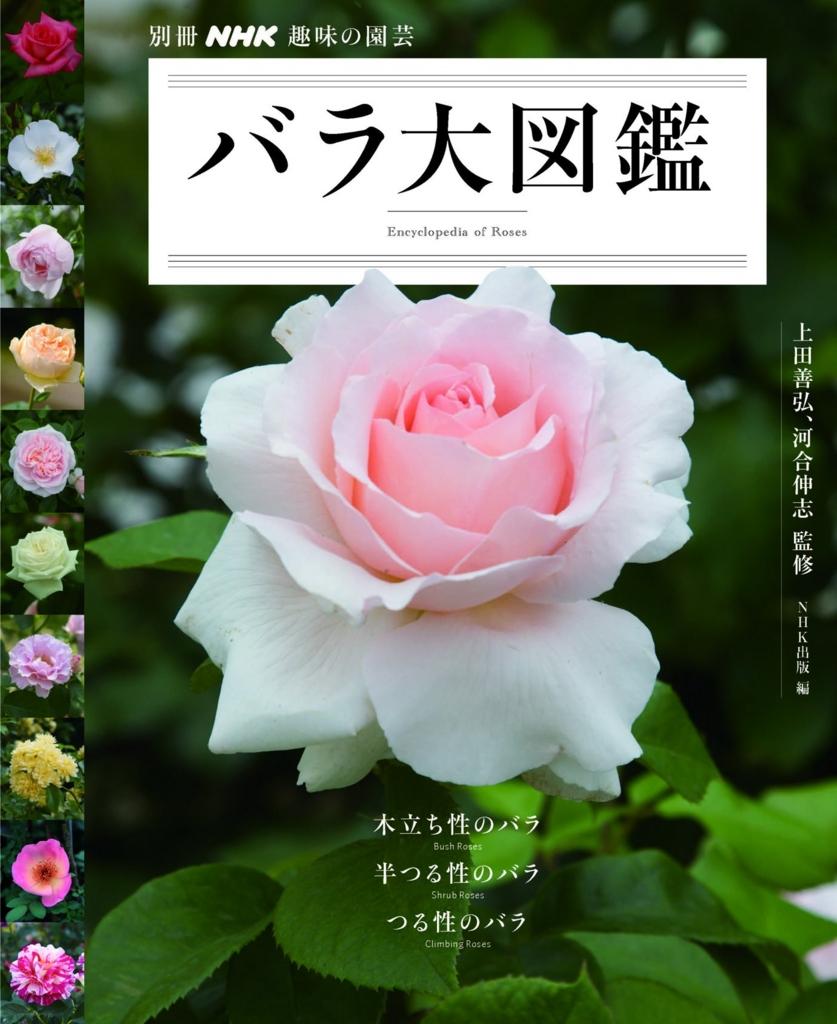 NHK趣味の園芸|バラ大図鑑