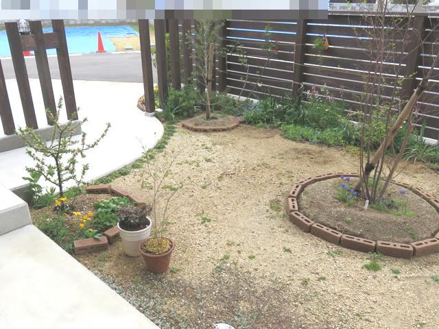 居間からみた庭