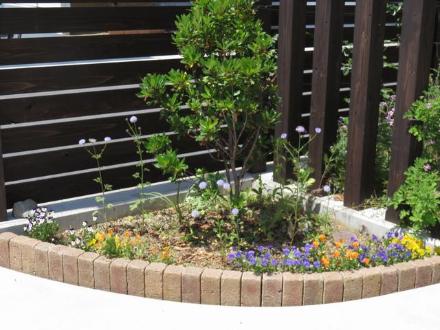 6月のコーナー花壇の画像