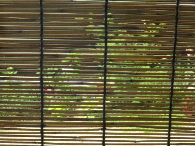 スダレごしの庭