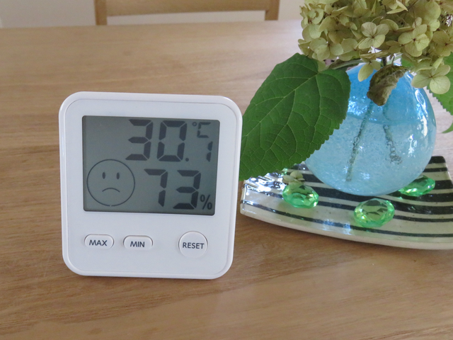 温湿度計午後