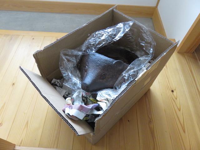 梱包を解かれたハリネズミプランター
