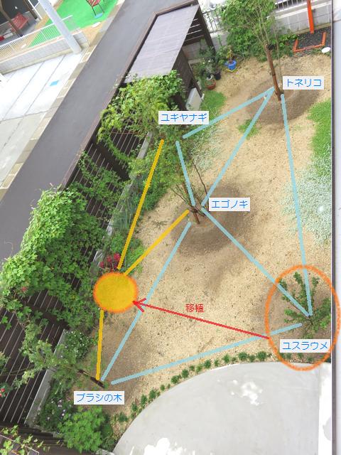 庭木の配置変更