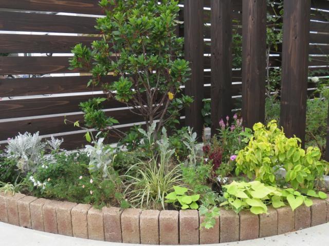 9月のコーナー花壇の画像