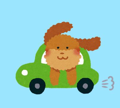 ドライブする犬のイラスト
