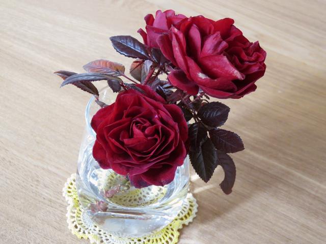切ったバラを飾った様子