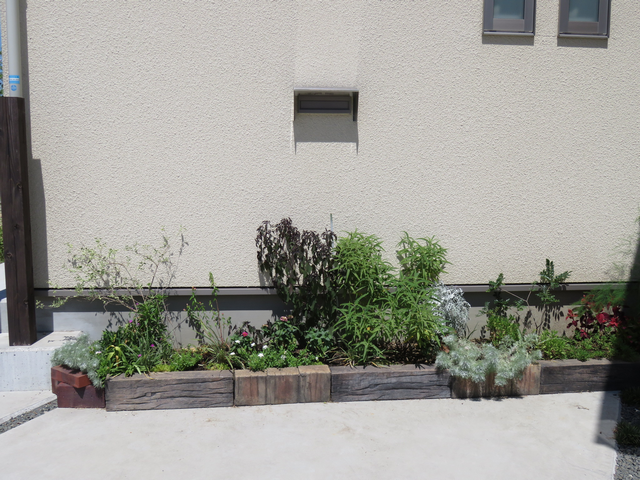 2018年7月駐車場花壇の全景