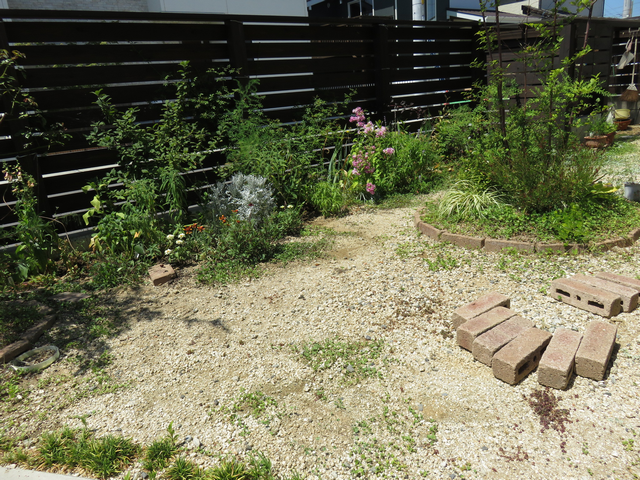 2018年7月の庭の様子