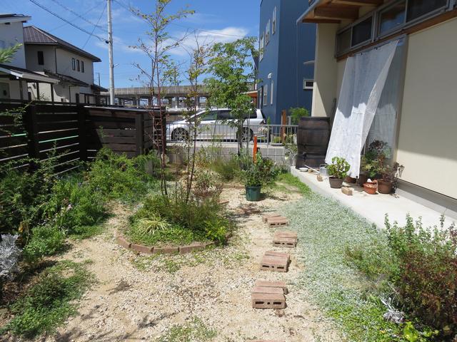 8月の庭の風景