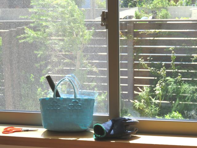 窓越しの秋晴れの庭