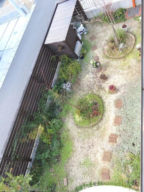 2018年12月の庭の全景