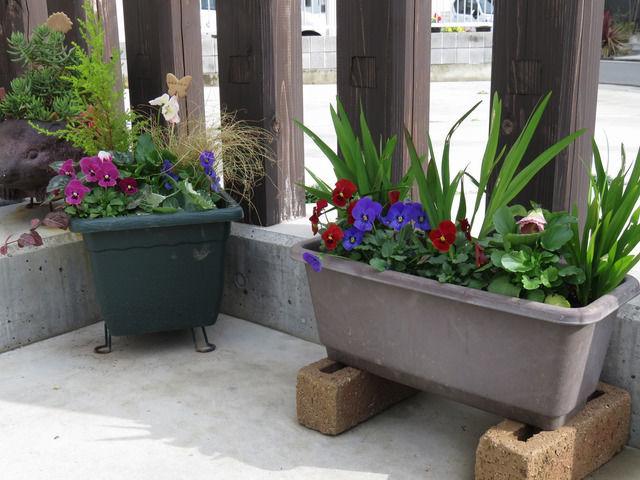 植木鉢とプランターの寄せ植え