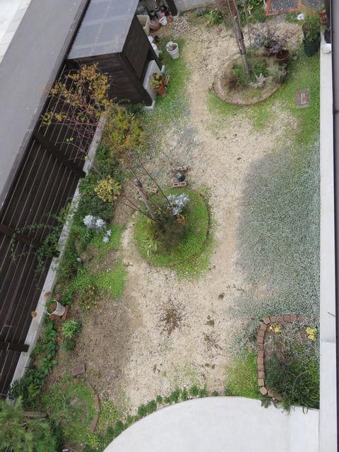 2017年12月の庭の画像