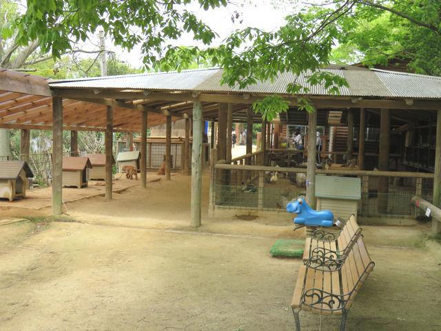 渋川動物公園の園内風景