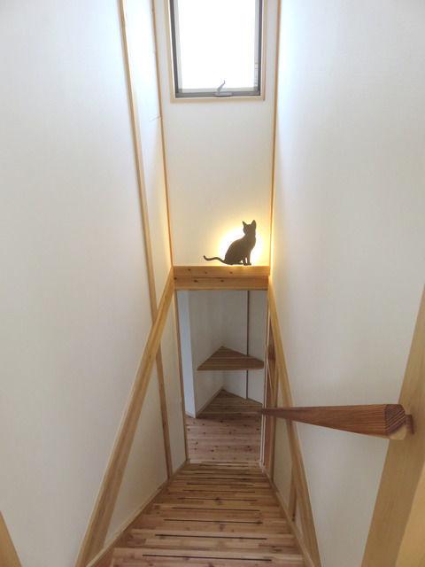 猫型の階段の照明