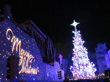 夜のクリスマスツリーの画像