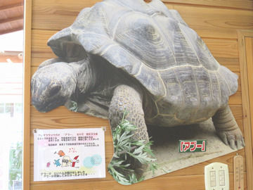 渋川動物園アブーパネル