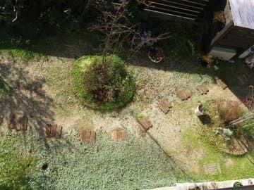 レンガを飛び石に並べた庭の全景