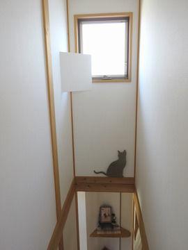 階段の明り取りの窓の横壁にある小さな扉を開けた様子