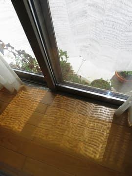直射日光を遮る遮光ネットを室内から見た様子