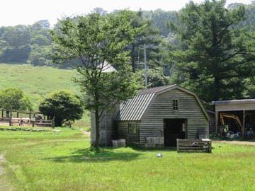 ポニー牧場